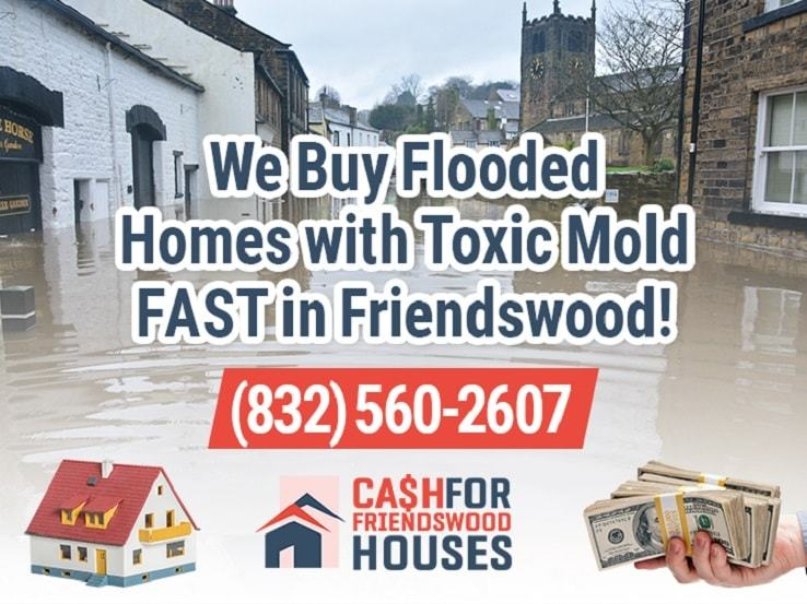 friendswood water damage and mold